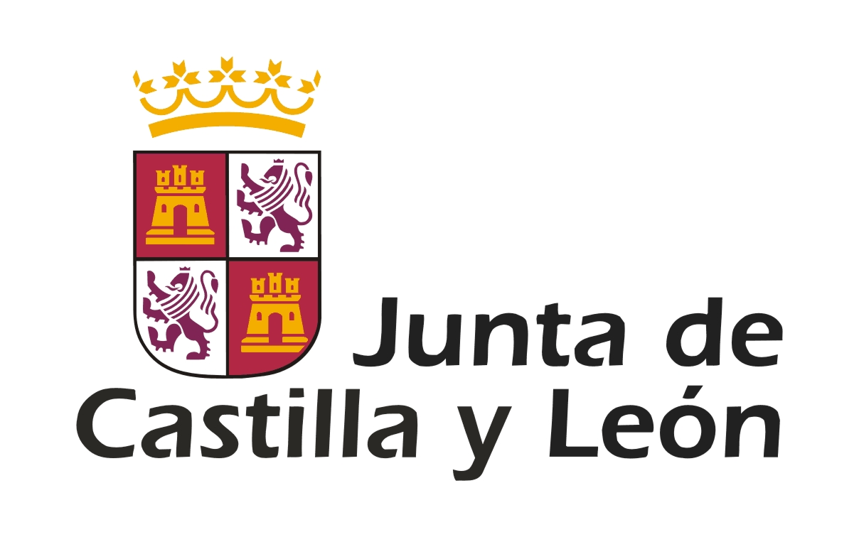 Realización de contrato público convocado por la Consejería de Cultura de la Junta de Castilla y León.